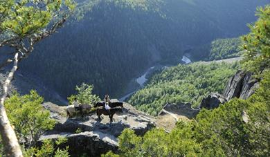 Ravens Gorge - Viewpoint and tourist attraction